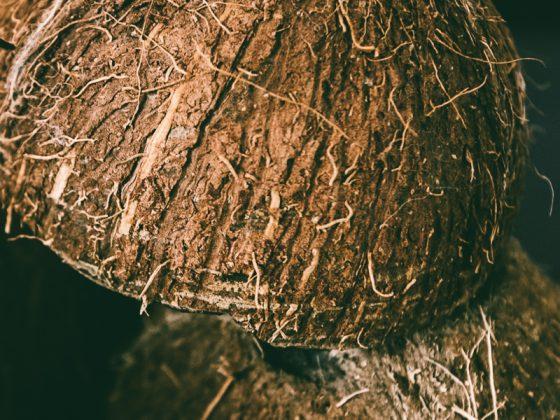 DSC 5753 560x420 - Fresh Coconut Milk